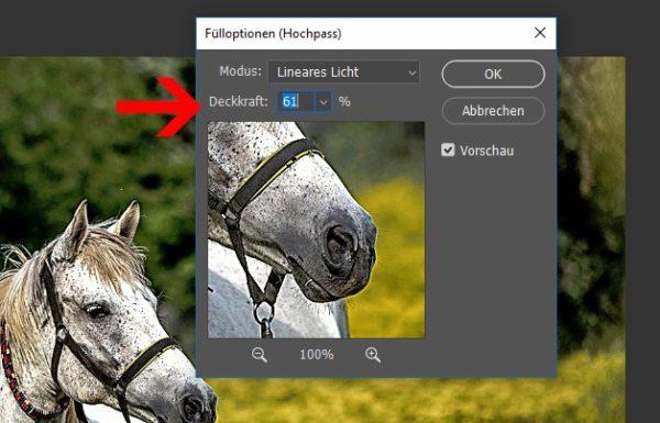 Fake HDR Bild erzeugen 10