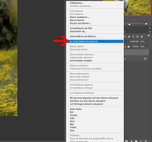 Fake HDR Bild erzeugen 3