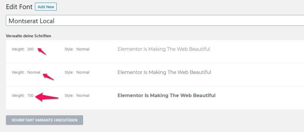 Elementor - Google Fonts lokal einbinden 3